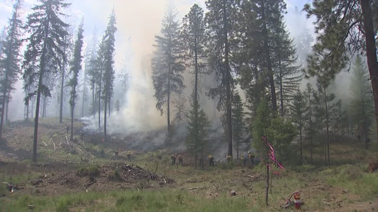 Managing wildfire resources