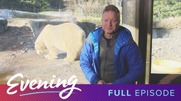 Tue 1/14, Point Defiance Zoo and Aquarium in Tacoma, Full Episode, KING 5 Evening