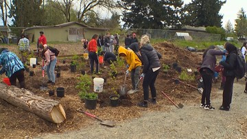 Burien students help grow fresh produce for their community