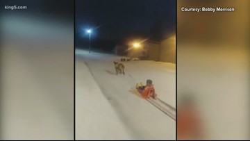 KING 5 viewers share winter moments from January storm