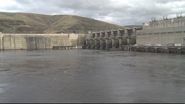 Forum on removing Snake River dams gets state funding