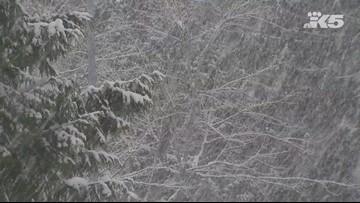 Snow falls in Smokey Point
