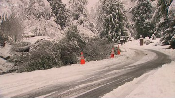 Snow falls across the Puget Sound region