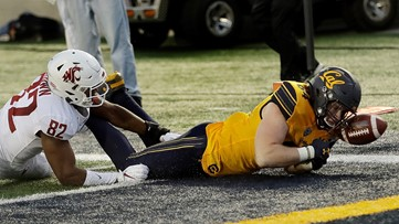 Modster has 4 touchdowns in return, Cal holds off WSU 33-20
