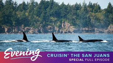 Fri 4/3, Cruising the San Juans - Special Edition, Full Episode, KING 5 Evening