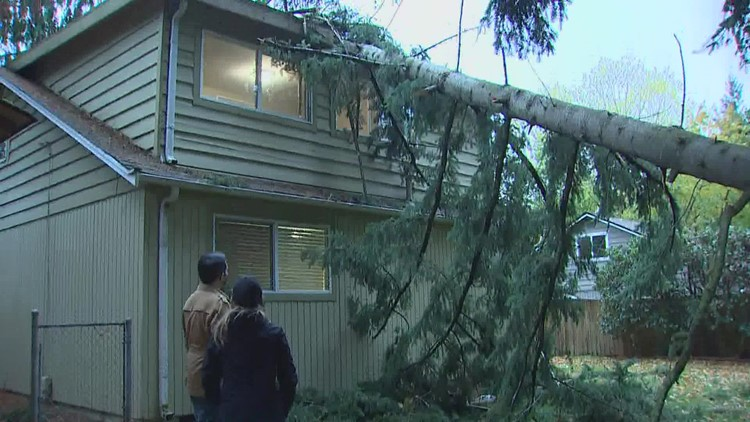 Tens of thousands remain without power following wind, storms. Here's what to expect Monday