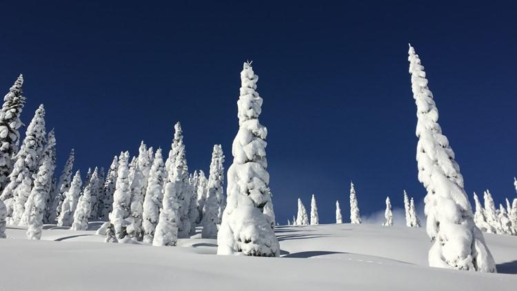 Snowy scene Mount Rainier