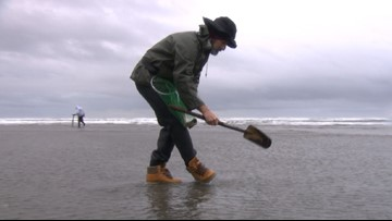 7-day round of razor clam digging begins Veterans Day