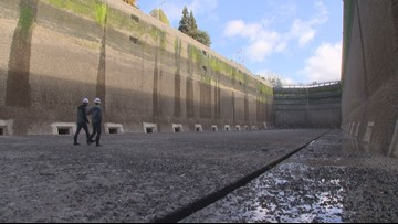 Inside the dry Ballard Locks, emptied for yearly cleaning and treasure hunt
