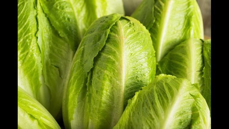 MI  included in multi-state E. coli outbreak linked to contaminated romaine