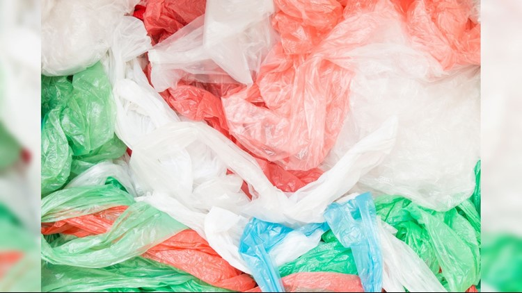 Port Angeles approved ban on single-use plastic bags