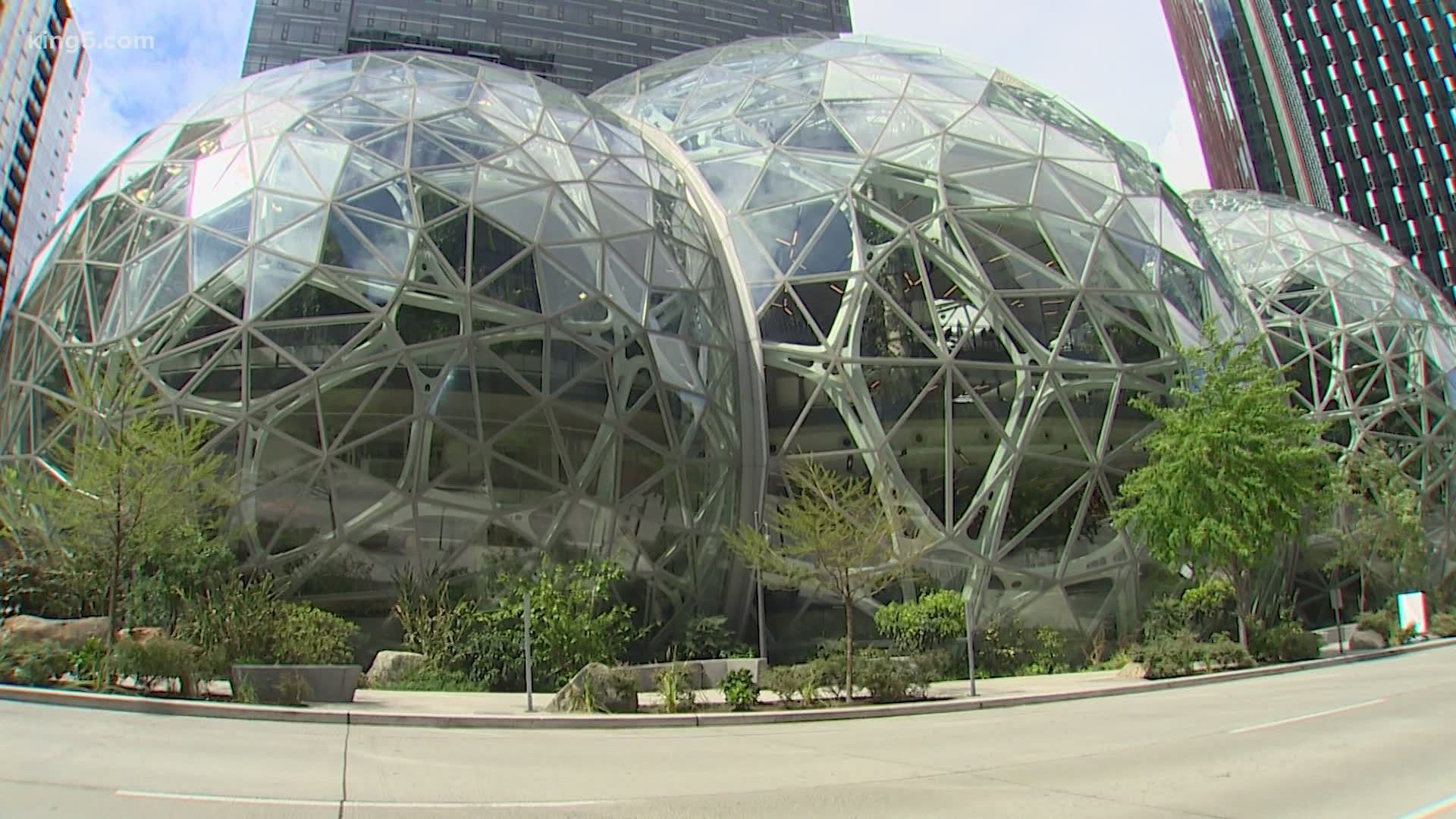 Amazon company owner photo