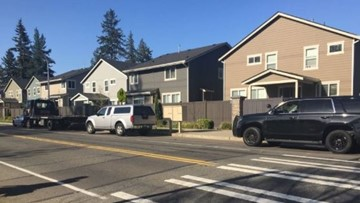 Child, adult hit by vehicle near Renton elementary school
