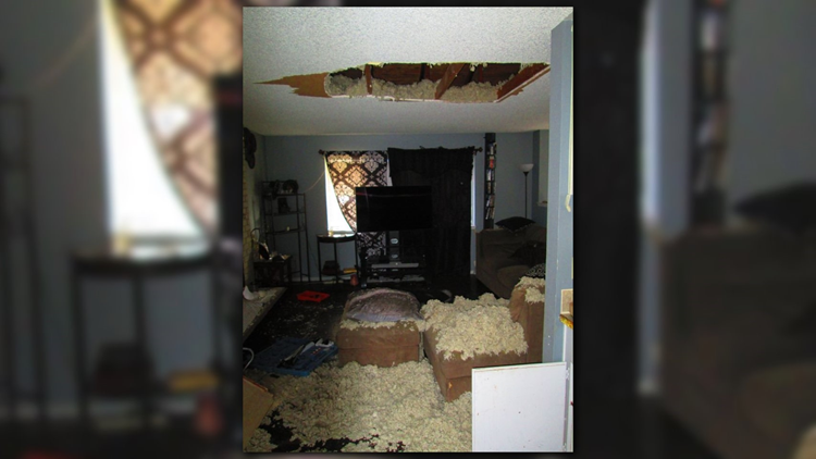 Wanted Man Hides In Attic Falls Through Ceiling Spanaway