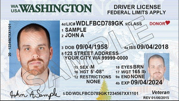 id number on drivers license california