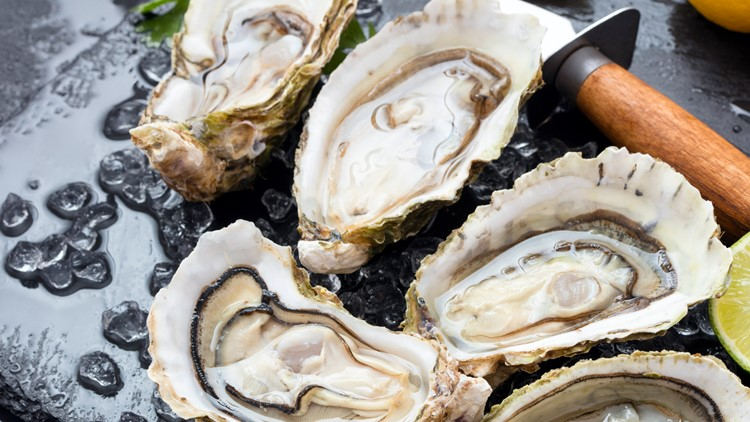 """""""Sea"""" for yourself what's so good about Oysters 🍽"""