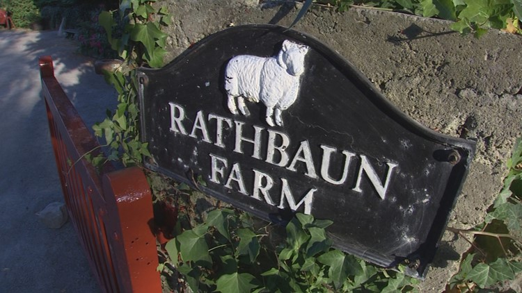 Rathbaun Farm is one the hidden-gem activities on the Adventures by Disney group tour of Ireland. KING 5 Evening's Kim Holcomb got an authentic Irish farm experience, making scones, tasting cheese, feeding sheep and eating a hearty beef stew dinner homemade with love.