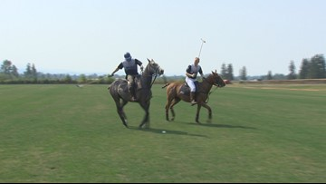 "The ""Sport of Kings"" in Enumclaw at the Seattle Polo Club this weekend"