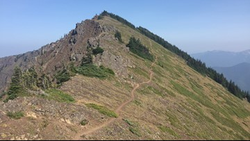 Klahhane Ridge has Olympic mountain views for the whole hike
