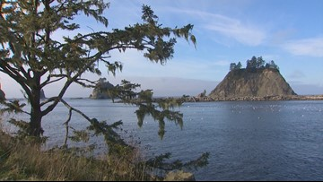 Quileute Tribe gets money to build tsunami safe school