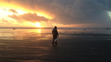 7-day round of razor clam dig approved with more tentative dates through February