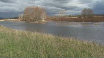 Everett estuary aims to boost salmon population