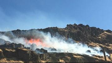 Lands commissioner seeks $55 million for wildfires, forests