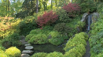 Seattle's picturesque Kubota Garden is a must-see this fall