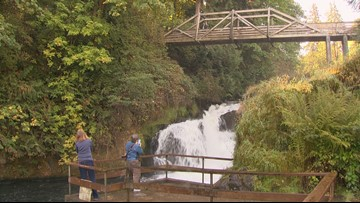 Tumwater Falls Park in Olympia is the perfect place to soak up nature this fall