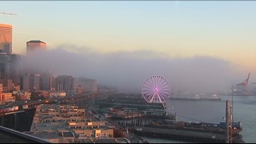 Here's why it has been so foggy around Puget Sound