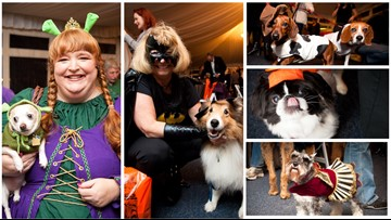 Not just for humans, this Halloween Mutt-Mixer is for dog lovers to meet and mingle