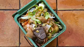 Composting coming to Western Washington University dorms