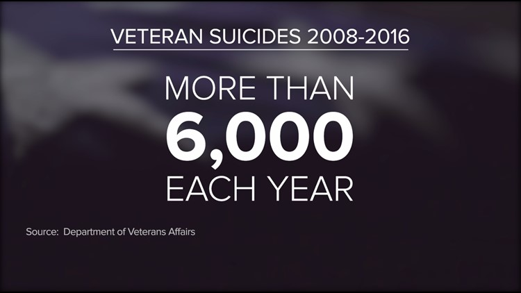 Veteran Suicides_1542774786939.PNG.jpg