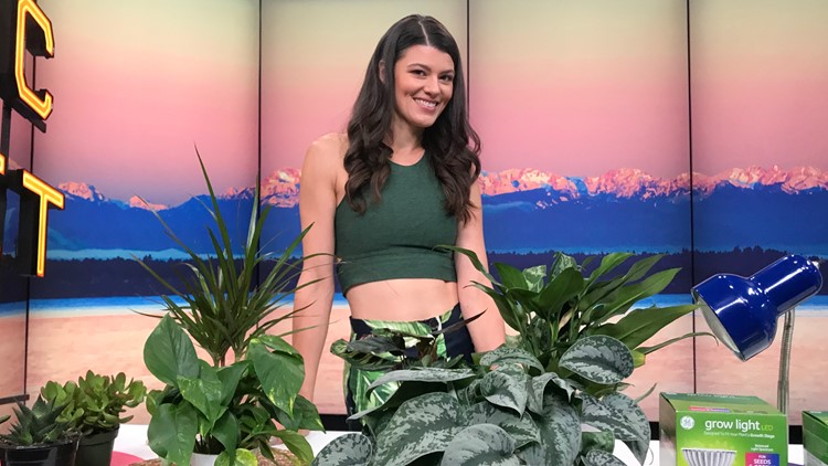 Summer Rayne Oakes, How to Make Plants Love You