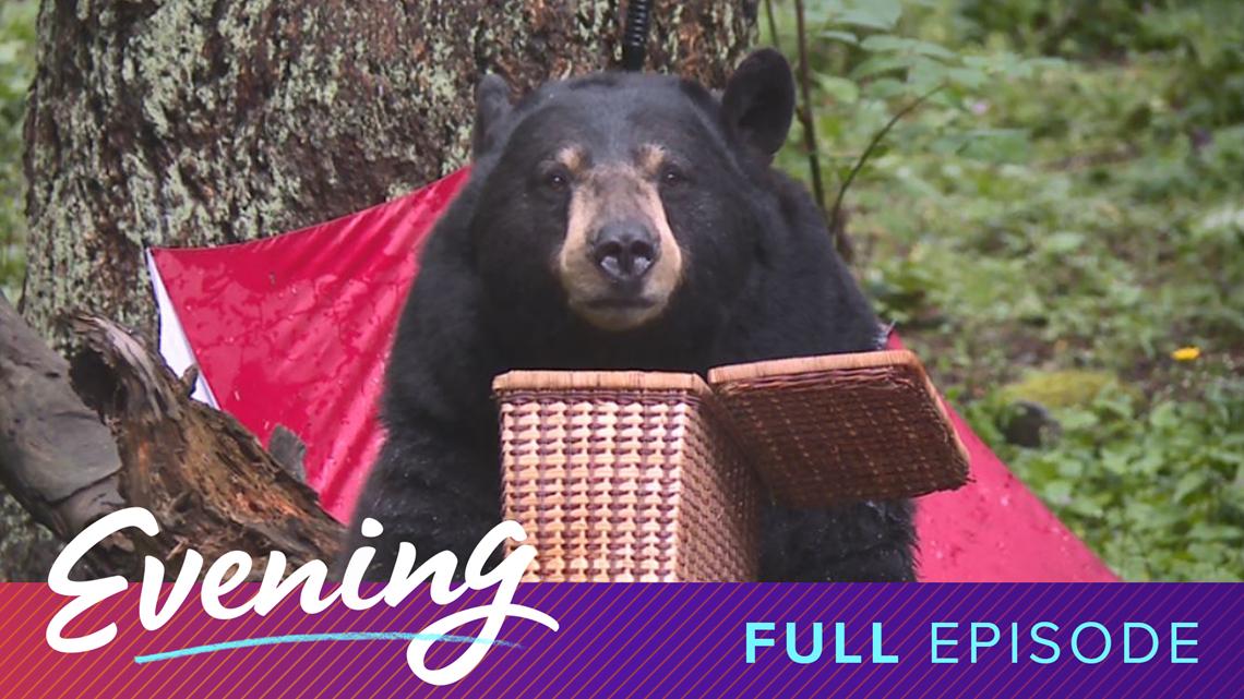 Bang Bang Kitchen and Northwest Trek's Bear Tips   Full Episode - KING 5 Evening