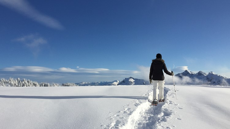 Ben There Done That: Snowshoeing Mount Rainier