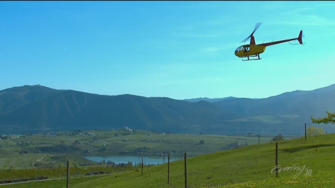 Tour Lake Chelan wineries by helicopter - KING 5 Evening