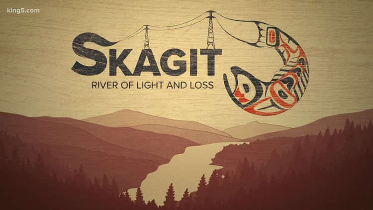 Seattle's Skagit River dams hurt salmon, orcas and Native American culture, agencies say