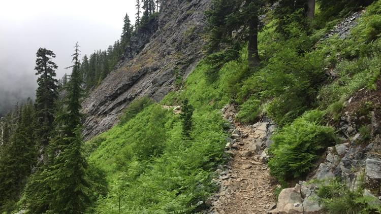 snow lake trail