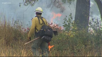 Greater potential for wildfire in western Washington into July