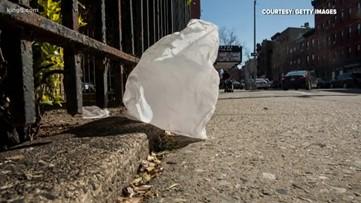 Kitsap County approves plastic bag ban for 2020