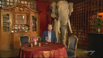 Mon, 7/2, Secretly Amazing Special at The Ruins in Seattle, Full Episode, KING 5 Evening