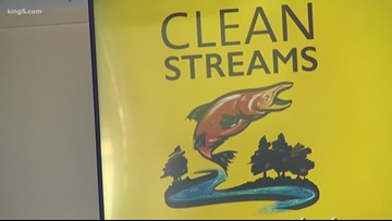 Puget Soundkeeper Alliance launches Clean Streams Campaign