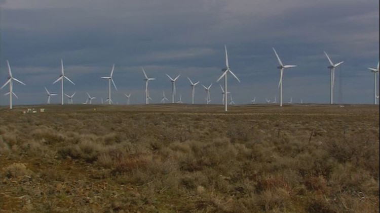 Wind Turbines Wild Horse