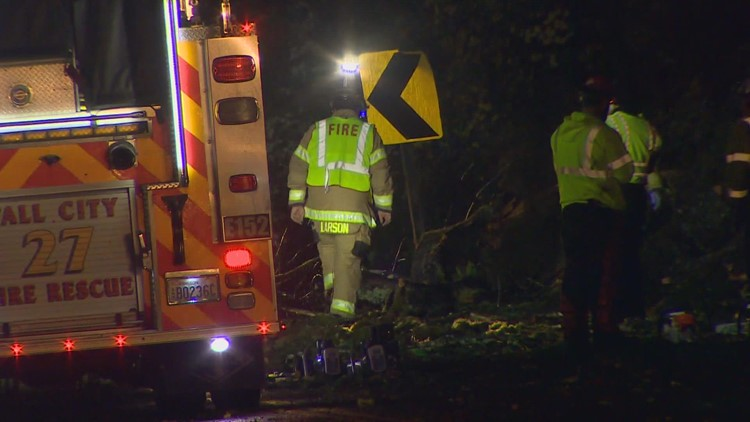 Tree crushes vehicle in Preston during fall storm