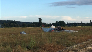 Pilot killed in small plane crash in Marysville field