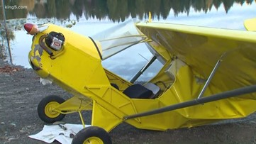 Kayakers rescue pilot after plane crashes in King County lake