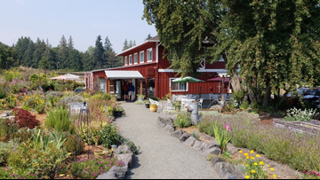 Nourish Sequim's organic offerings feed the body and soul