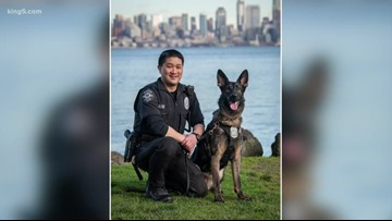 Seattle police dog catches porch pirate in Queen Anne