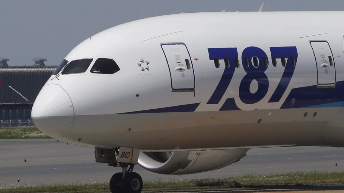 Boeing halts deliveries on 787 Dreamliner